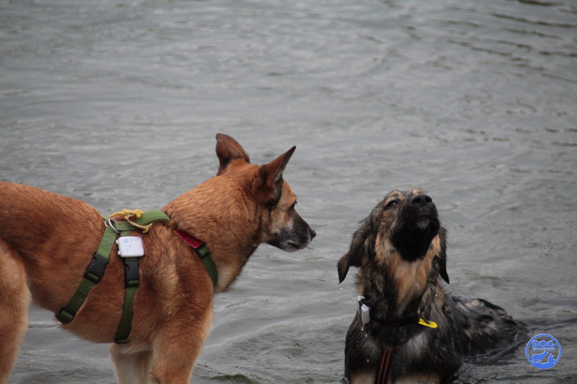 Bartina e Concetta al fiume