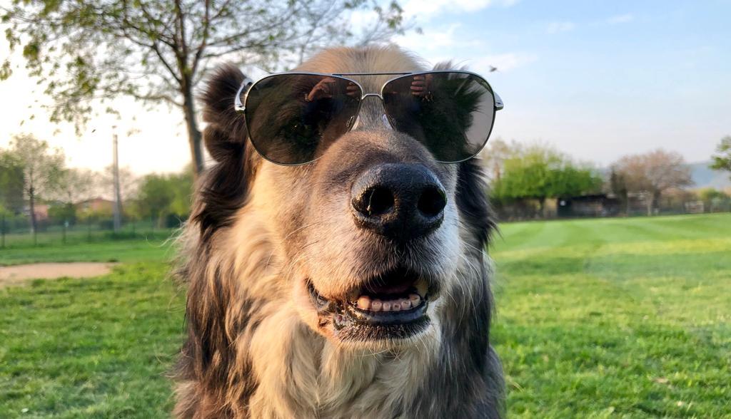 Gianbattista con gli occhiali da sole